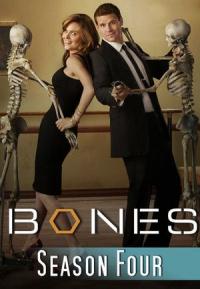 Bones Season 4 (2008)