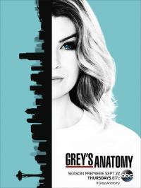 Grey&#39s Anatomy Season 13 (2016)
