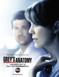 Grey&#39s Anatomy Season 11 (2014)