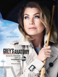 Grey&#39s Anatomy Season 12 (2015)