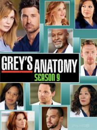 Grey&#39s Anatomy Season 9 (2012)