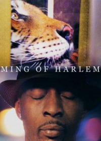 Ming of Harlem: Twenty One Storeys in the Air (2014)
