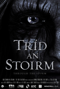 Through the Storm (2012)