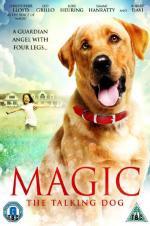 Magic (2010)