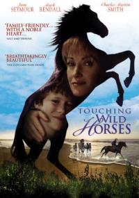 Touching Wild Horses (2002)