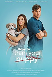 How to Train Your Husband (2017)