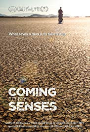 Coming to My Senses (2017)