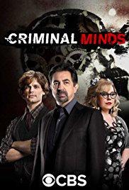 Criminal Minds Season 14 (2018)
