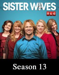 Sister Wives Season 13 (2019)